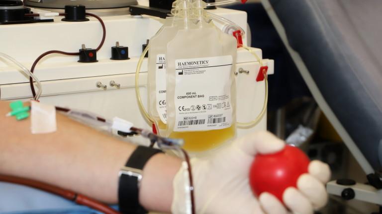 Комуникацията между центровете за кръвна плазма у нас - нерегламентирана и неясна