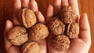Орехите предпазват от рак на гърдата