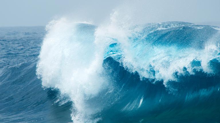 Регистрираха най-голямата вълна някога в Южното полукълбо
