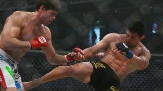 ММА, кикбокс и куп звезди на Final Fight Championship в София!