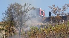Спасиха от пожар лозе и градини в благоевградското село Рилци