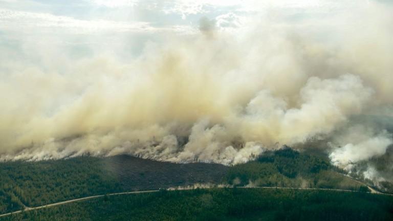 Пожарите обхванаха огромни територии от горите в региона