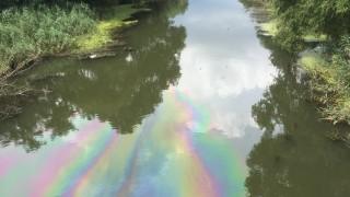 5 институции гледат разлив на гориво в река Ахелой