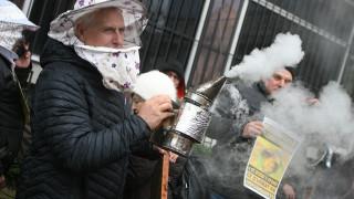Пчелари от цялата страна протестират срещу масовото отравяне на пчелите с пестициди