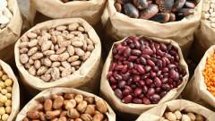 Износът на храни от Турция за пръв път достигна $20 милиарда
