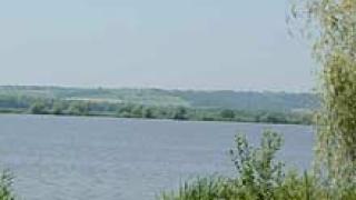 Нивото на Дунав при Ново село се повишава