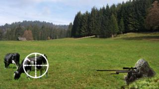 Борисов усети гафа за кравите и снайперистите