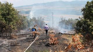 Пожарът край Черна могила е овладян