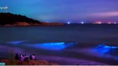 Китайско море проплака със сини сълзи