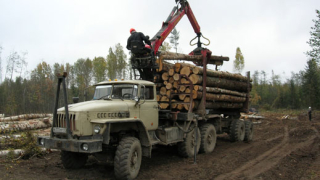 Искат дърводобивни фирми да плащат за ремонт на пътищата
