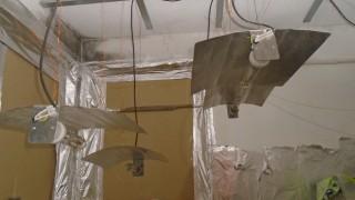 Почти килограм марихуана иззеха полицаи в село Богатово