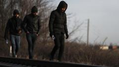 """""""Амнести интернешънъл"""" обвини Европа в загуба на човечност заради мигрантите"""