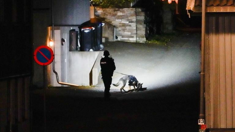 37-годишен датчанин е мъжът, заподозрян в убийството на петима души