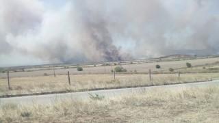 Пожар бушува в 300 дка гори в новозагорски села