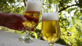 2,5% повече бира продали пивоварите у нас през 2016 г.