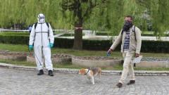 """Разпръсната отрова по улиците на кв. """"Манастирски ливади"""" уби 5 кучета"""