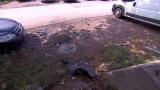 Взривиха колата на приятелката на Божо Кравата