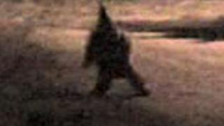 Зловещ гном върлува из Аржентина и плаши местните (видео)