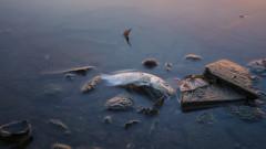 Глобалното затопляне превръща океаните в мъртви зони