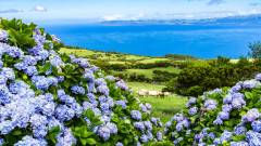 Защо е син Синият остров в Португалия