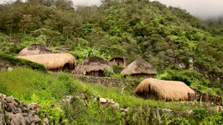 Най-малко 24 избити в племенни кланета в Папуа Нова Гвинея