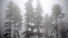 Мъгливо и облачно начало на седмицата