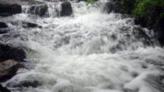 Нивото на Арда се покачва с 3 метра