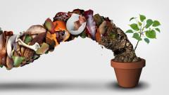 5 начина, за да спестим пари и да помогнем на Земята