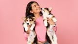 Кучетата, човешките емоции и как домашните любимци ги разпознават