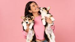 Как кучетата разпознават емоциите ни