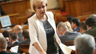 Части от РБ клатят правителството, обвинява Менда Стоянова