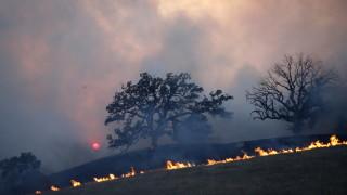 Регистрираха 21 пожара на сухи треви в Благоевградско за денонощие
