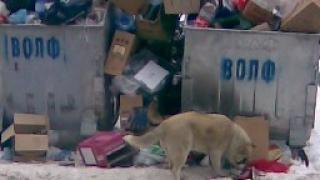 Кризисният щаб се заема и с чистене около болници