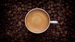 Рекорден студ покоси кафе реколтата в Бразилия и повиши цените до 6-годишен връх