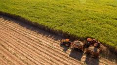 Румъния е сред първенците по обработваеми земи в Европа. И сред последните по добив