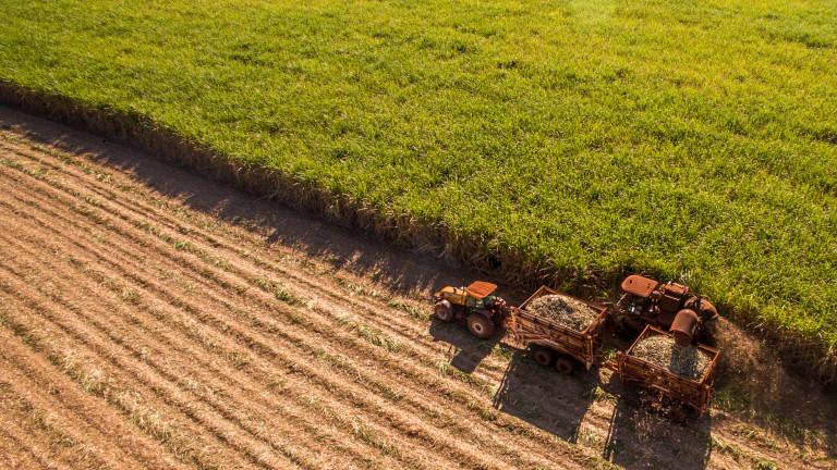 Европа има нов шампион в земеделието. И той не е част от ЕС