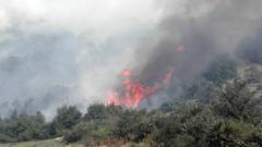 Огромен горски пожар край Мурсалево