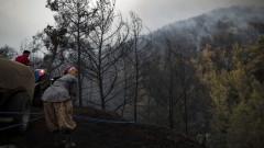 Горските пожари в Турция продължават, 13 са извън контрол