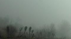 Мъгла има на проходите Петрохан и Троянски