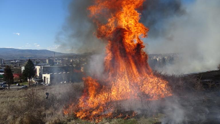 Голям пожар избухна в Благоевград, съобщават от БНТ. Три екипа
