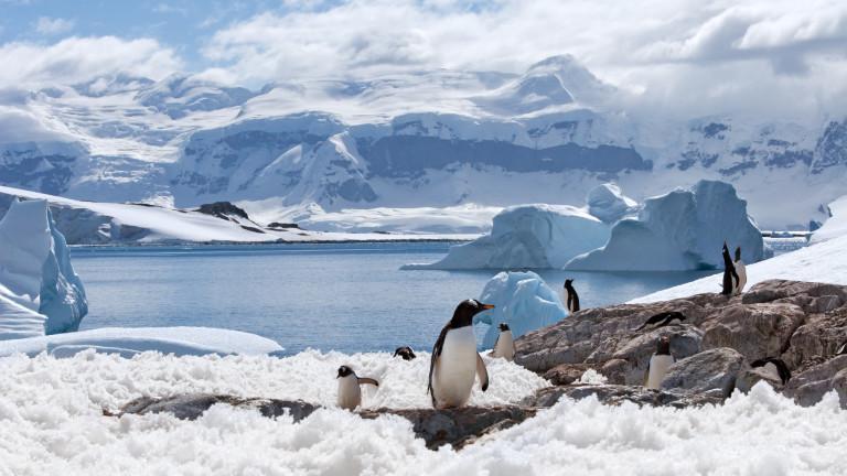 Последната ни група полярници заминава за Антарктида