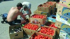 Българският пазар е залят от полски домати, заяви Грудев