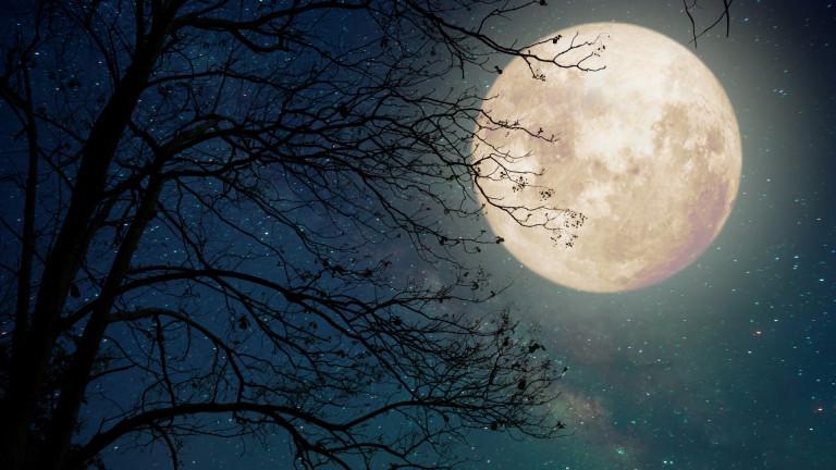 натална луна