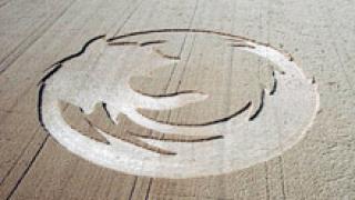 Американски студенти нарисуваха върху трева 70-метрово лого на Firefox