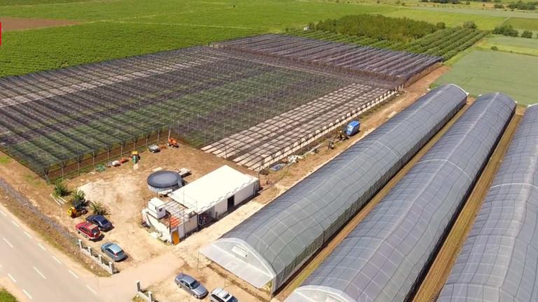 Как технологиите в земеделието могат да донесат 10 пъти ръст на оборота за по-малко от десетилетие?