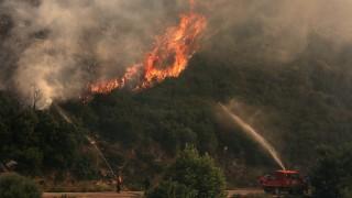 Стотици евакуирани заради големи пожари в Австралия