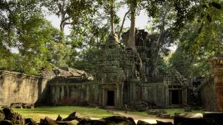 Откриха огромни неизвестни средновековни градове под джунглата в Камбоджа