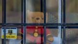 Коронавирус: В САЩ опитват да разберат синдром с аневризма и инсулт при деца