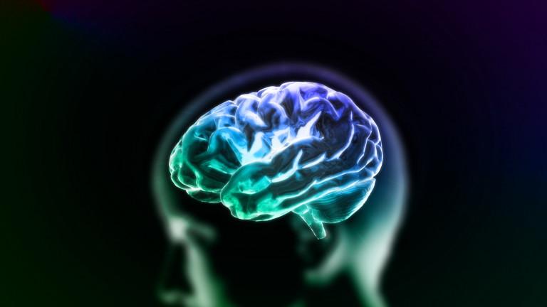 Мозъкът не позволява да мислим за собствената ни смърт