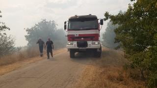 Четири противопожарни се борят с огъня в Пловдивско село